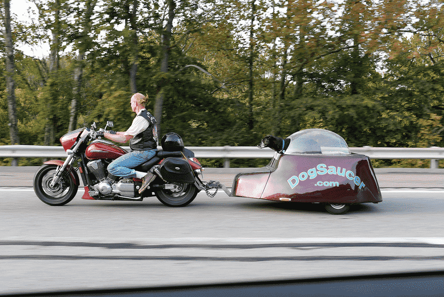 the dog saucer motorcycle trailer